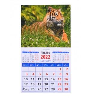 Календарь магнитный на 2022 год