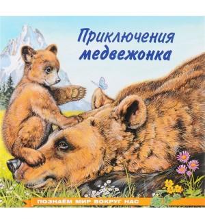 Приключения медвежонка. Познаем мир вокруг нас
