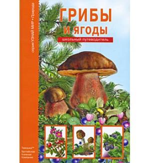 Афонькин С. Грибы и ягоды. Школьный путеводитель. Узнай мир