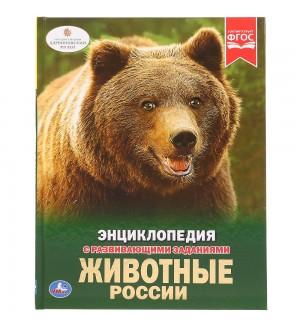 Животные России. Энциклопедия с развивающими заданиями