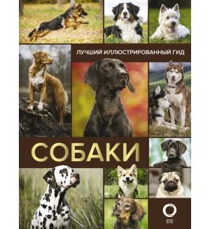 Собаки. Лучший иллюстрированный гид