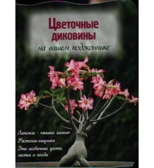 Волкова Е. Цветочные диковины на вашем подоконнике. Цветы в саду и на окне