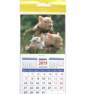 Календарь на магните 2019
