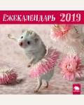 Календарь настенный с ежиками на 2019 год. Ёжекалендарь 2019 (балерина)