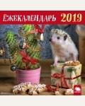 Календарь настенный с ежиками на 2019 год. Ёжекалендарь 2019 (елочка)