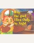 Максименко Н. 2 уровень. Почему сова летает только ночью. Why the owl flies only by night (на английском языке). Читаем вместе