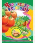 Что растет в огороде? Книжки-картонки-мини