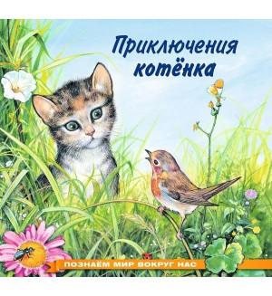Гурина И. Приключения котенка. Познаем мир вокруг нас