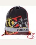 Мешок для обуви Grizzly OM-675-3/2
