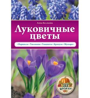 Белякова А. Луковичные цветы. 33 урожая. (М)