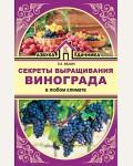 Жвакин В. Секреты выращивания винограда в любом климате. Азбука дачника