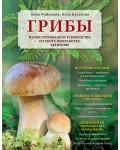 Романова А. Грибы. Иллюстрированное руководство по сбору, переработке, хранению.