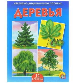 Деревья Наглядно-дидактическое пособие