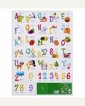 Английский алфавит и цифры. Плакат. А2
