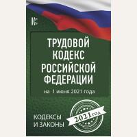 Трудовой Кодекс Российской Федерации на 1 июня 2021 года. Кодексы и законы