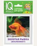 Аквариумные рыбы. Набор карточек для детей. IQ-малыш