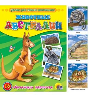 Животные Австралии. Обучающие карточки. Уроки для самых маленьких