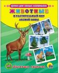Животные и растительный мир лесной зоны. Обучающие карточки. Уроки для самых маленьких
